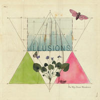 WAY DOWN WANDERERS - ILLUSIONS / CLEAR