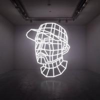 DJ SHADOW - RECONSTRUCTED /  BEST OF DJ SHADOW