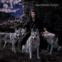 HACKETT STEVE - WOLFLIGHT