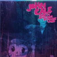 CALE JOHN - SHIFTY ADVENTURES IN NOOKIE WOOD