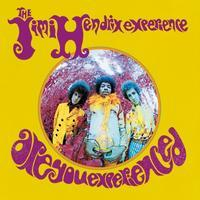 HENDRIX JIMI - ARE YOU EXPERIENCED / US - MONO