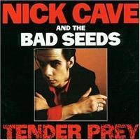 CAVE NICK & THE BAD SEEDS - TENDER PRAY