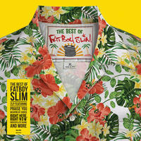 FATBOY SLIM - BEST OF