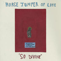 HORSE JUMPER OF LOVE - SO DIVINE / GOLD VINYL